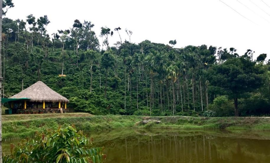 Cottage and pond - Sakleshpur